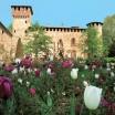 3-Grazzano-Visconti-Castell