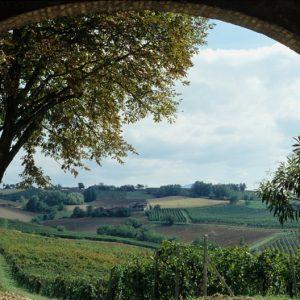 Val Tidone, visita ai colli, visita ai vigneti, visita alle cantine di Piacenza